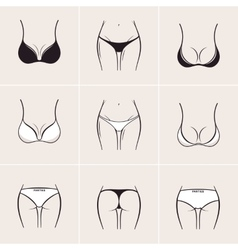 Sexy women bra and panties icons logos vector image