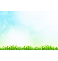 Fresh green grass with blue bokeh and sunlight vector image