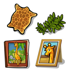 set isolated of four item on giraffe theme vector image