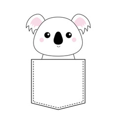 koala bear head face sitting in the pocket doodle vector image
