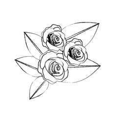 Monochrome blurred contour of bouquet bud roses vector