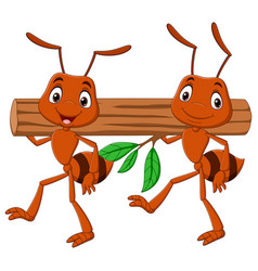 Team ants carrying a log vector