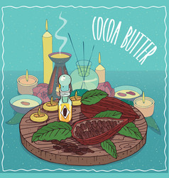 Cocoa butter oil used for aromatherapy vector