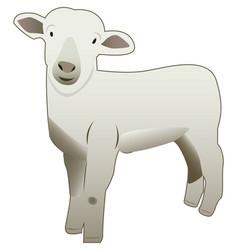Cute baby sheep vector