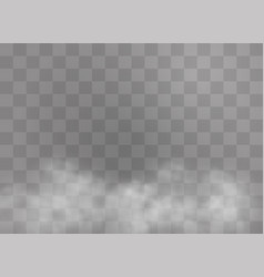 fog or smoke vector image