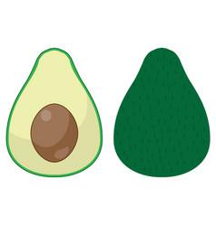 funny avocado vector image