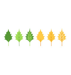 leaves collection isolated on white background vector image