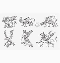 set mythological animals chinese dragon harpy vector image