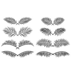 set of borders with palm leaves vector image