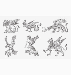 set of mythological animals chinese dragon harpy vector image