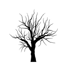 Sketch of dead tree without leaves isolated on vector image