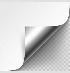 curled metalic corner of white paper vector image