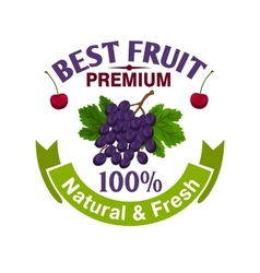 Fresh grape and cherry fruit icon vector image