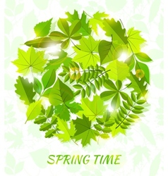 round spring background from leaves vector image