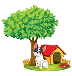 A doghouse and a dog under a tree vector image vector image