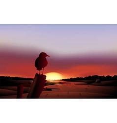 A bird in sunset view of the desert vector