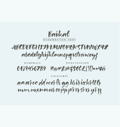 baikal handwritten brush font vector image