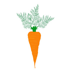 big carrot vector image