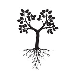 black tree and roots vector image