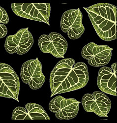 floral seamless pattern alocasia plant leaves vector image