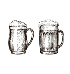 Hand drawn beer mug elements for design menu vector