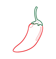 isolated pepper icon vector image