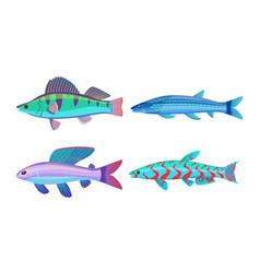 Mackerel blue fish fauna set vector