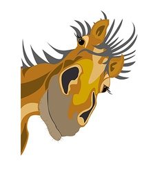 Old horse vector image