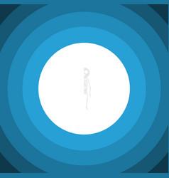 isolated cranium flat icon skeleton vector image vector image