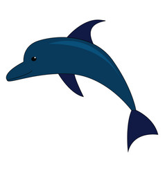 a blue dolphin on white background vector image