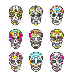 Colored sugar skull icons set vector