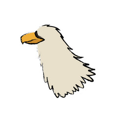 Griffo head feather predator animal vector