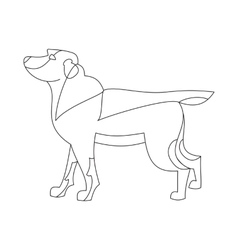 Labrador retriever dog vector
