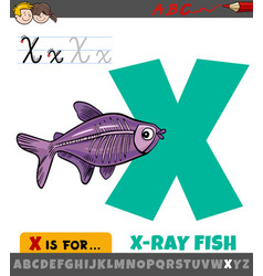 Letter x from alphabet with cartoon x-ray fish vector