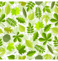 seamless pattern from spring leaves vector image