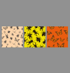 set seamless patterns with insects graphics vector image