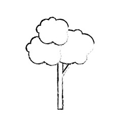 Tree nature isolated vector