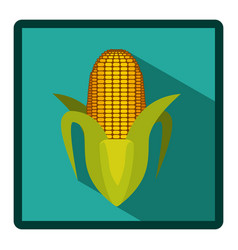 Corn cob icon image vector