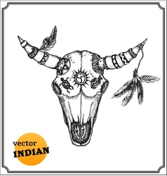 Buffalo skull with feathers for shamans witchcraft vector image vector image