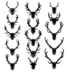 Antler trophies vector