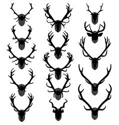 Antler trophies vector image vector image