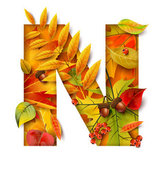 autumn stylized alphabet letter n vector image