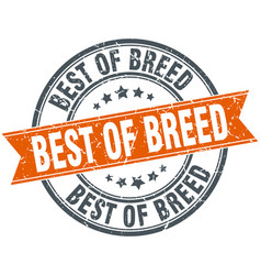 Best of breed round grunge ribbon stamp vector