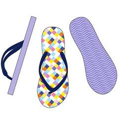 Colorful sandals vector