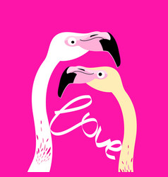 flamingos in love on a pink background vector image