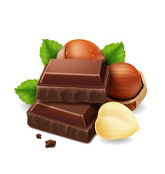 Hazelnuts and chocolate pieces vector