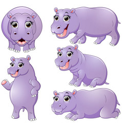 hippo cartoon set collection vector image