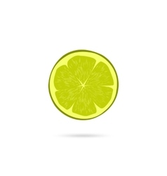 Lime slice icon isolated on white vector image