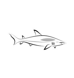 stylized shark vector image vector image