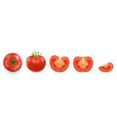 3d realistic different tomato icon set vector